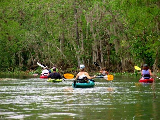 Homer United States Kayak