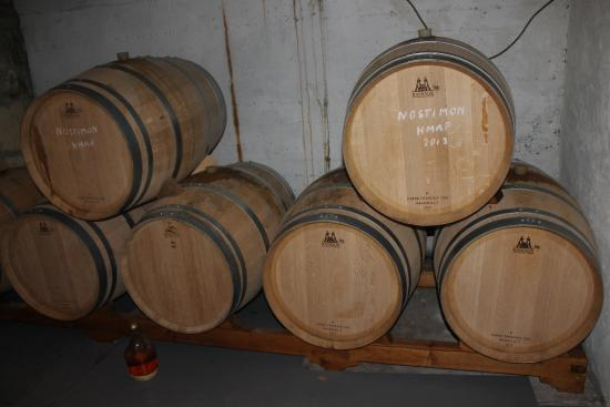 Cyprus Winery Trips