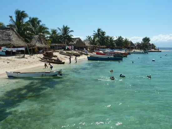 Honduras Swimming