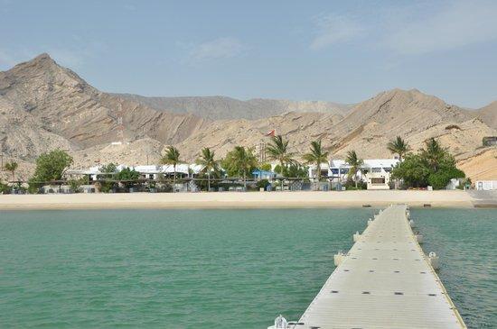 Oman Dive Trips