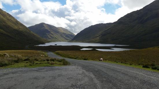 Ballyhaunis Ireland Tours