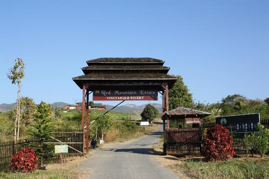 Myanmar Winery Trips