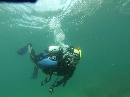 Gibraltar Dive Trips