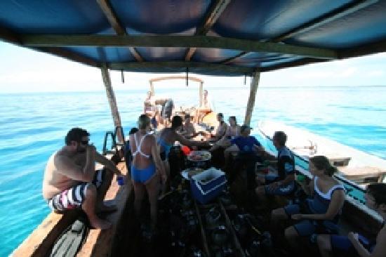 Tanzania Dive Trips