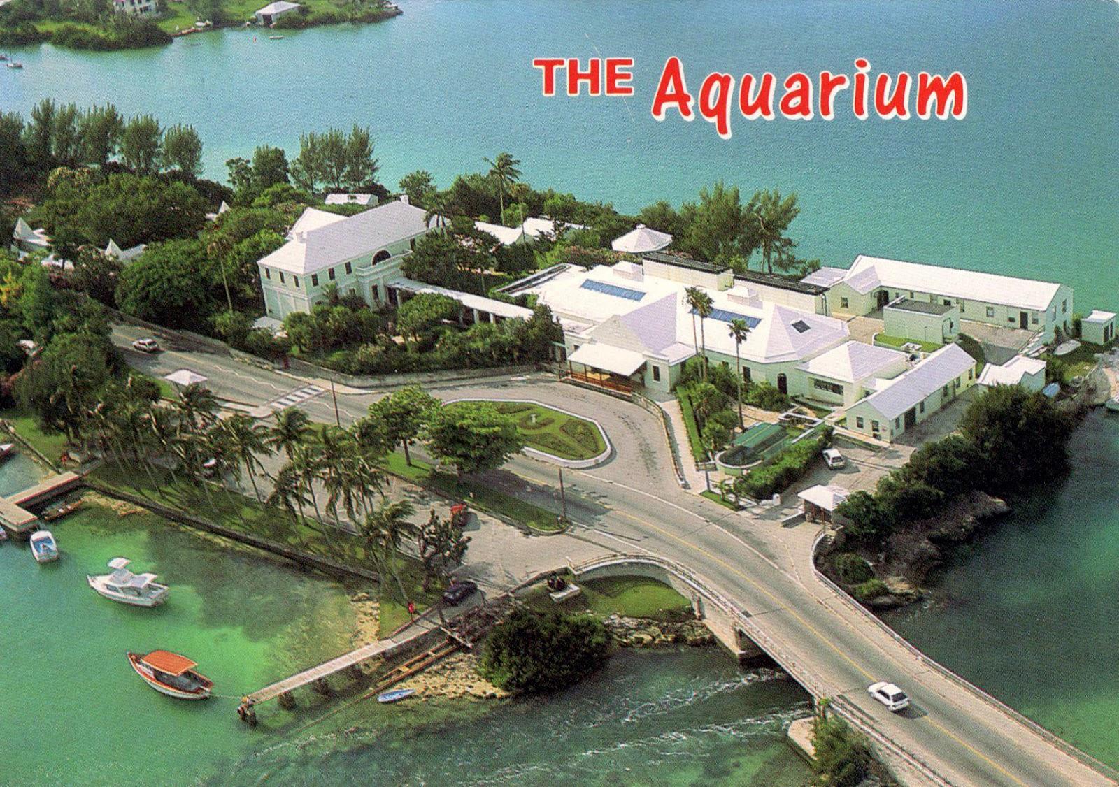 Bermuda Museums