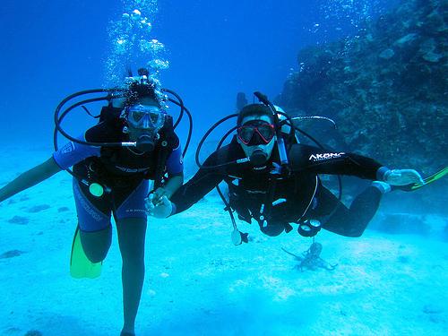 Seychelles Dive Trips