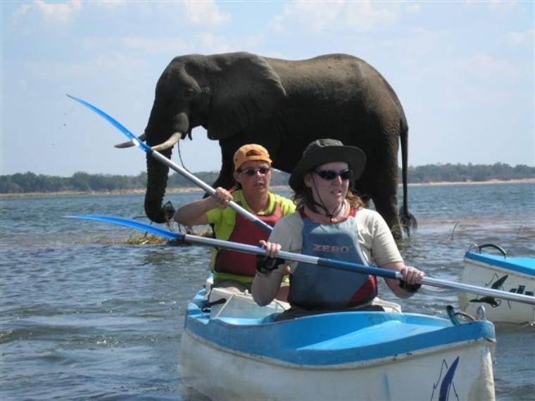 15 South Africa Kayak