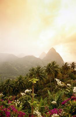 Castries Saint Lucia Beaches